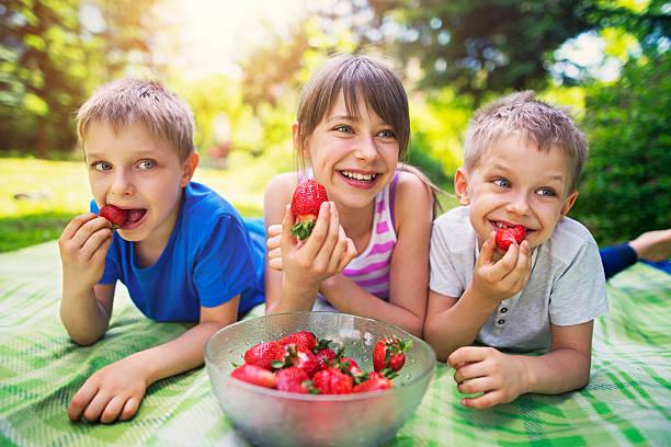 kinder haben picknick im garten essen und erdbeeren - mensch isst gras stock-fotos und bilder