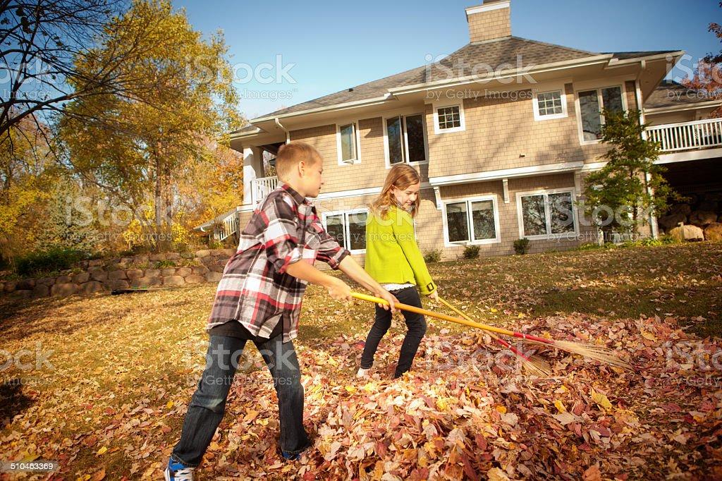 Children Helping Rake Leaves in Backyard stock photo
