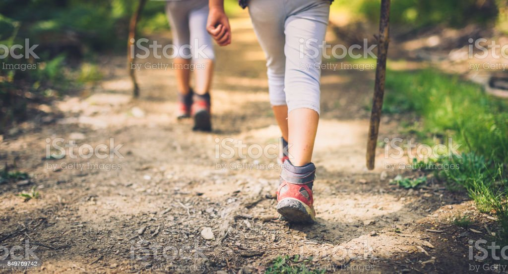 Children hiking in mountains or forest with sport hiking shoes. stock photo