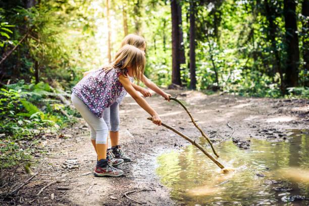 de kinderen wandelen in de bergen of forest met sport hiking schoenen. - bos spelen stockfoto's en -beelden