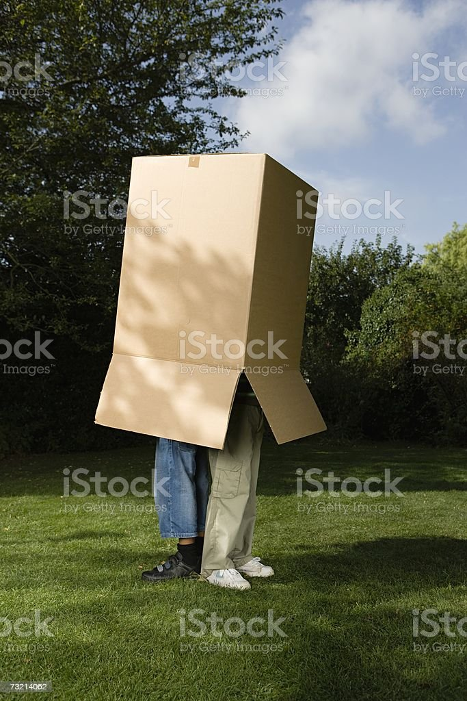 Children in a cardboard box royalty-free stock photo