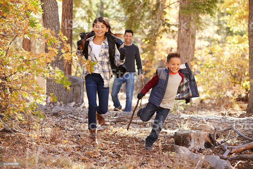Children in a forest running to camera, father looking on stock photo