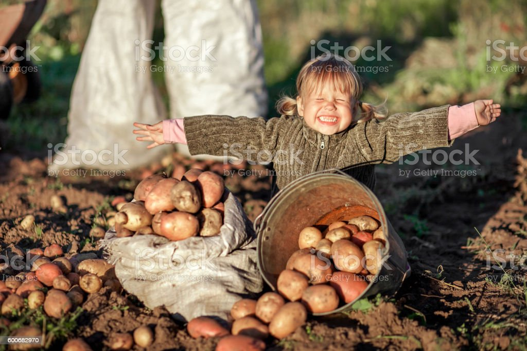 Children in garden. stock photo