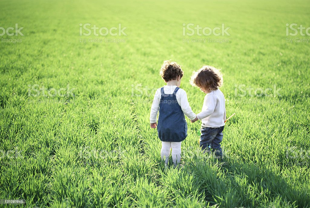 Children in spring field royalty-free stock photo