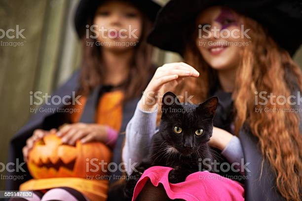 Children in stage costumes of wizards with cat at halloween picture id589117630?b=1&k=6&m=589117630&s=612x612&h=kwpxia0v15tnna3  1cf lpcrpxdel1t 2pcn0 oiaa=