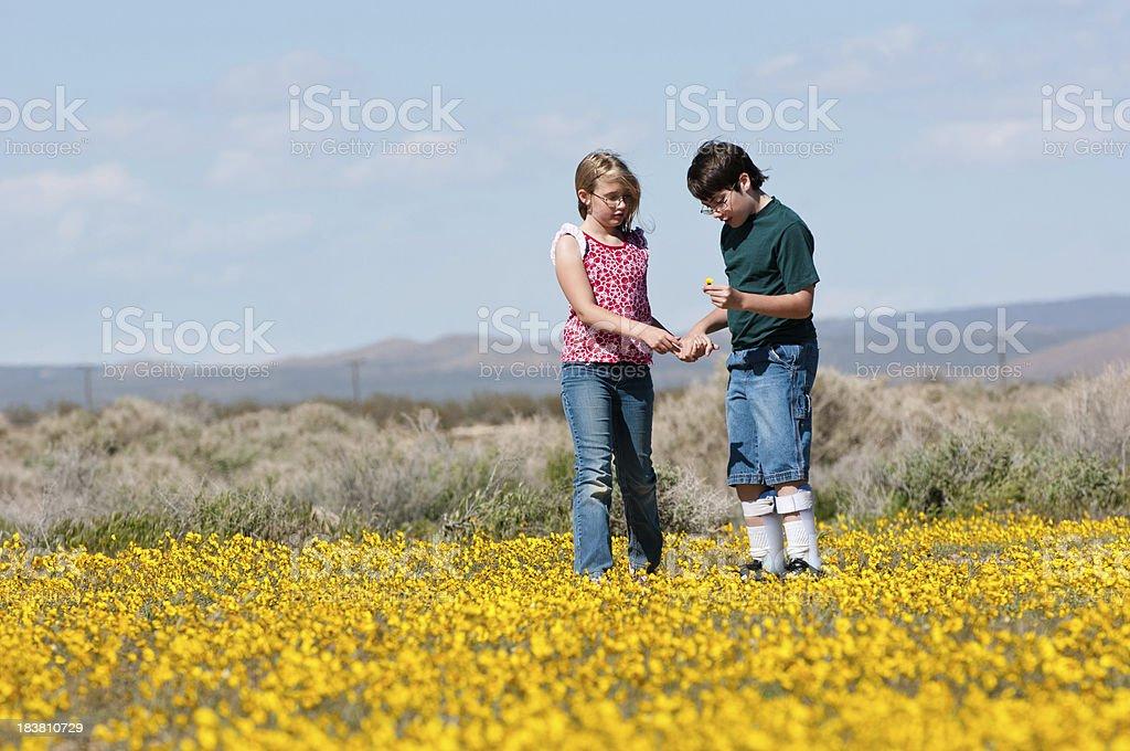 Children in wildflowers stock photo
