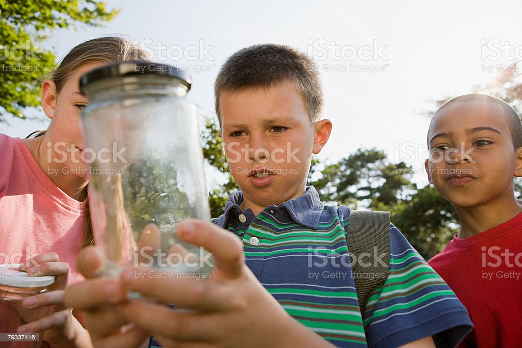 Children looking at jar royalty-free stock photo
