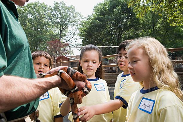 kinder, die in snake - vorschulzoothema stock-fotos und bilder