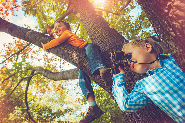 children on a tree in autumn - binocular boy bildbanksfoton och bilder