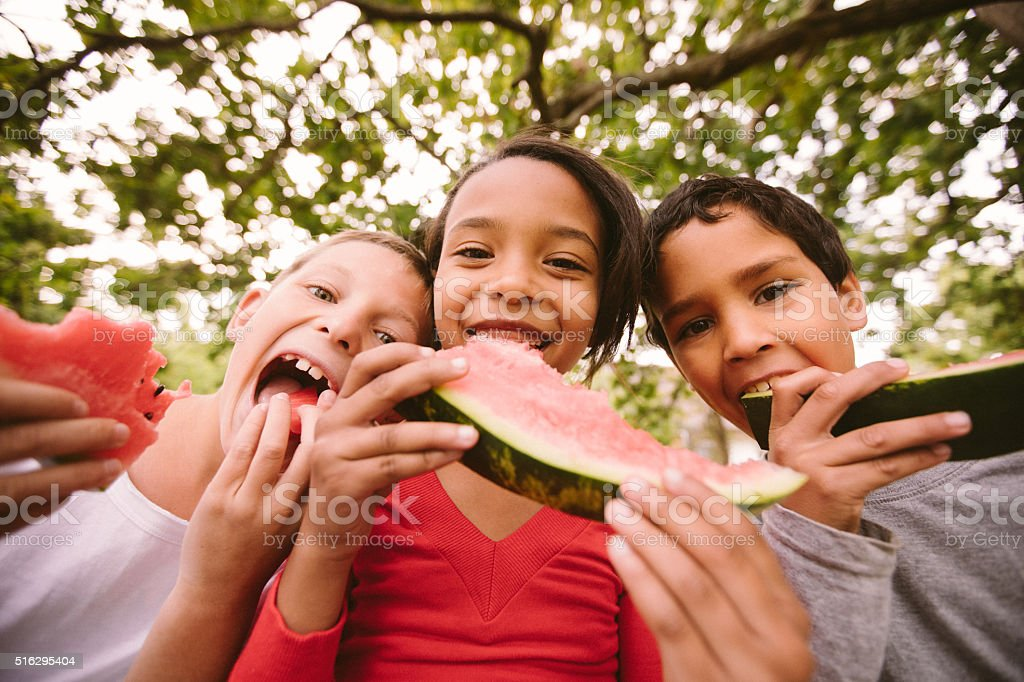 Children on a wooden fence eating watermelon on summer day stock photo