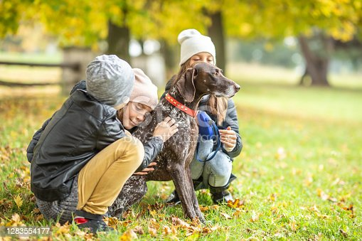 Children petting a dog outdoors during a fall walk in the nature.