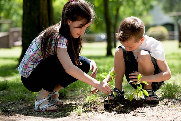 Kinder und Pflanzen – Foto
