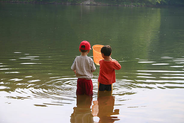 Children playing at the water/like, childhood memories  wading stock pictures, royalty-free photos & images