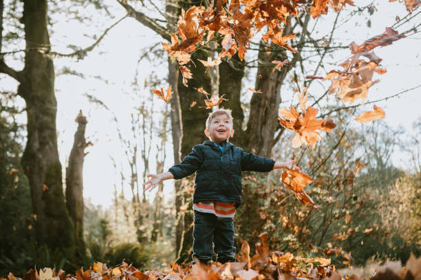 Children Playing In Autumn Leaves stock photo