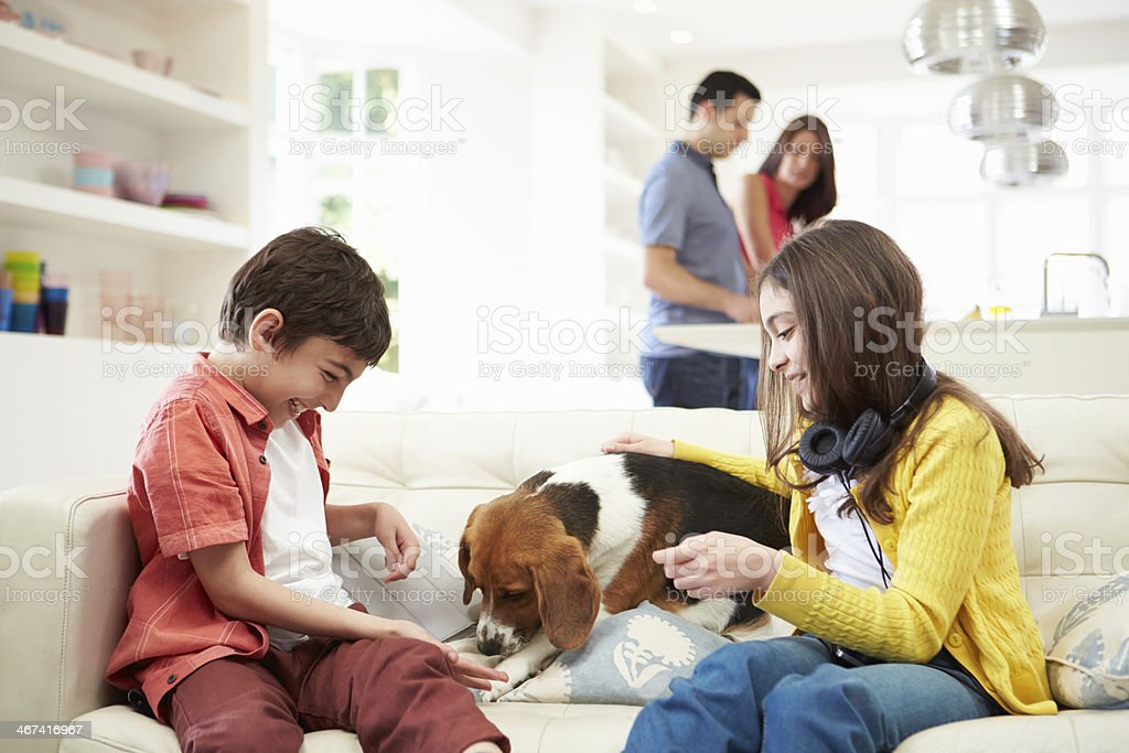 Children Playing With Dog On Sofa As Parents Make Meal stock photo