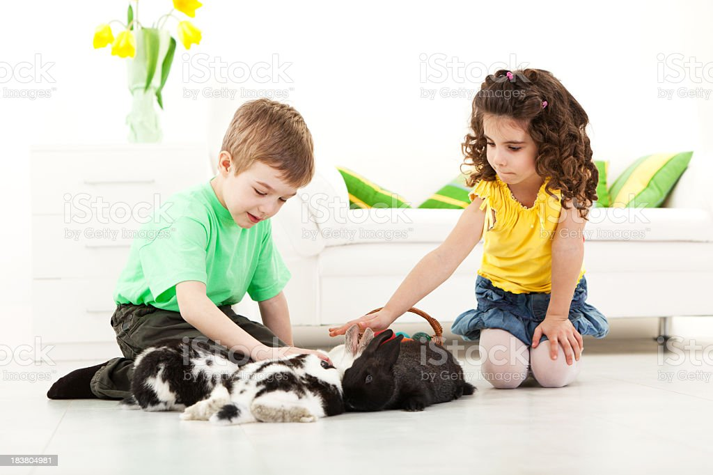 Children playing with rabbits royalty-free stock photo