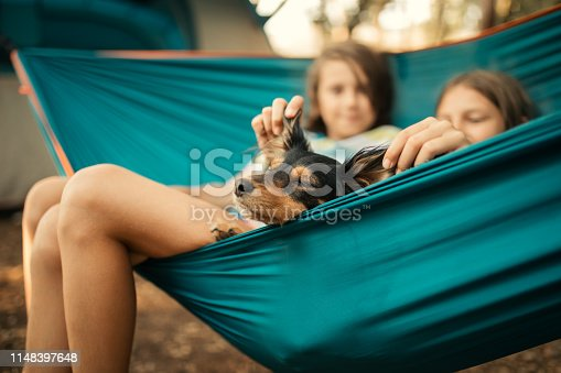 Boy and girl and their dog relaxing in hammock in camp which is located in forest. Behind them is tent. They looks very cute and happy, careless and playful.