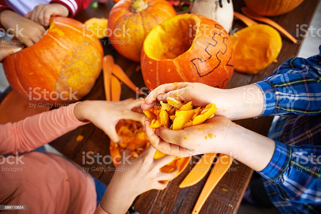 Children removing pulp from pumpkins to make Jack O'lanterns stock photo