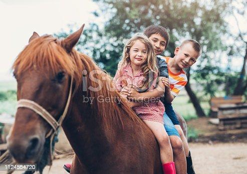 Farm children riding a horse
