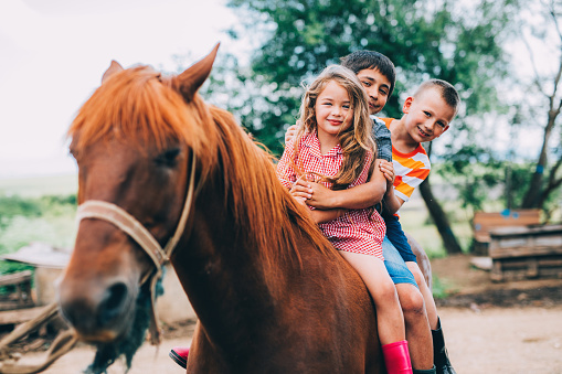 Three children on a horse outdoors.