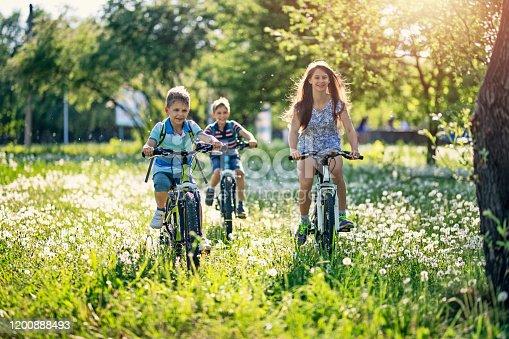 istock Children riding bicycles in dandelion field 1200888493