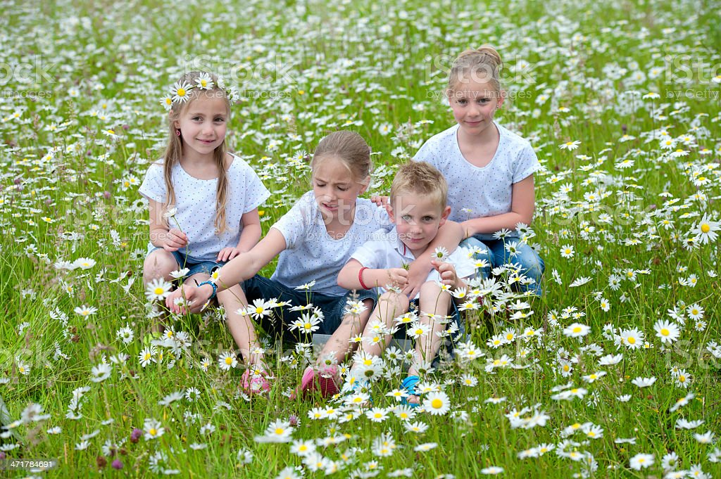 children seated in meadow between daisies royalty-free stock photo