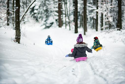 Children sledding in winter forest.