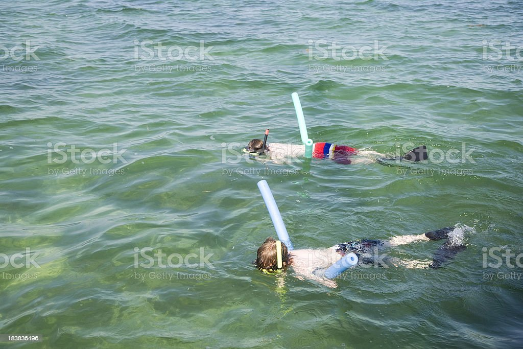 Children Snorkeling off Key West Florida stock photo