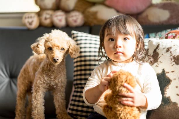 子供、ぬいぐるみ、ペット(犬) - ライフスタイル ストックフォトと画像