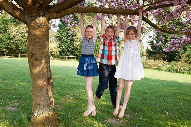 Kinder schwingen von Baum im Garten – Foto