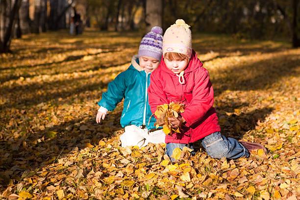 Children throw autumn leaves 4 stock photo