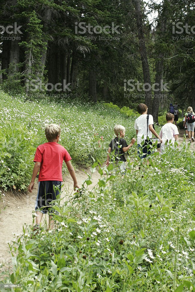 Children walking in the countryside royalty-free stock photo