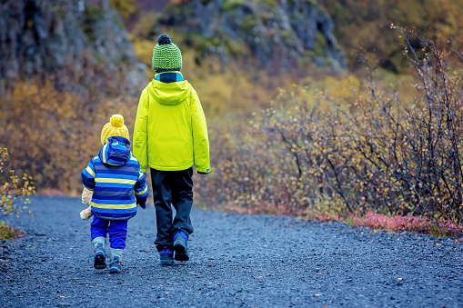Children walking on a beautiful path of the nature in Skaftafell Glacier national park on a gorgeous autumn day