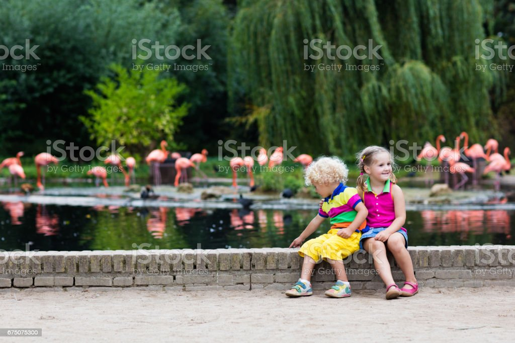 Children watching animals at the zoo - foto de stock