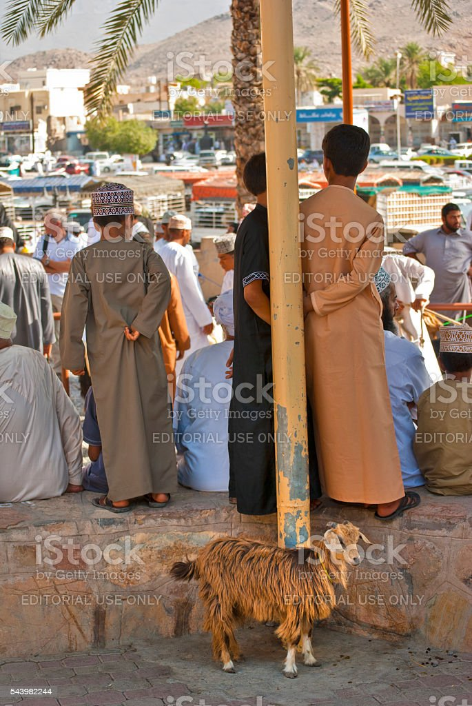 Children watching cattle market with goat in foreground, NIzwa, Oman stock photo