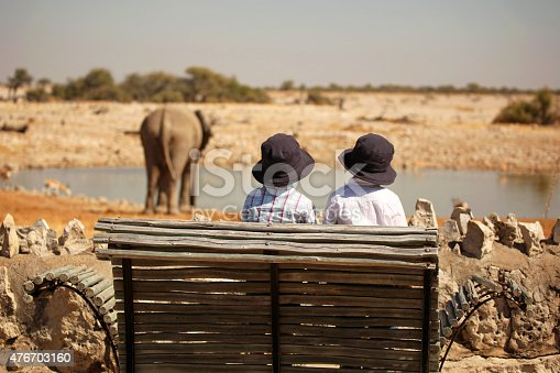 Two children are watching an elephant at the Okaukuejo waterhole in Etosha National Park in Namibia, Africa. This is a rear view image of the twin boys wearing sun hats sitting on a wooden bench and watching a big elephant bull who is drinking water.