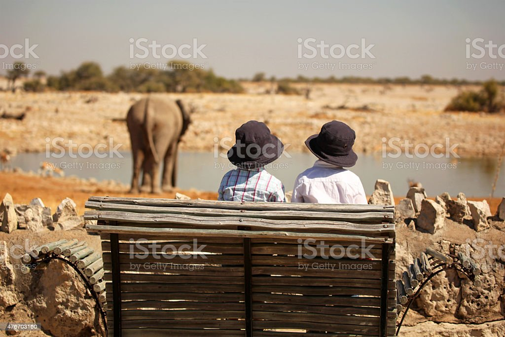 Children Watching Elephant At Okaukuejo Waterhole in Etosha Namibia stock photo