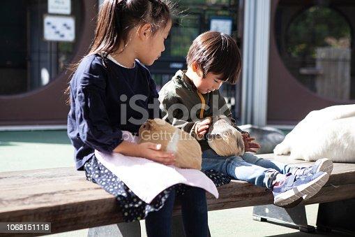 Children who are pretty cute hamster