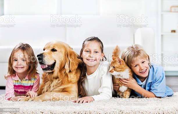 Children with animals lying down on the carpet picture id169950473?b=1&k=6&m=169950473&s=612x612&h=tenncdnaecrph2zrox ucnxffsvnxnznmii 8cie9oc=