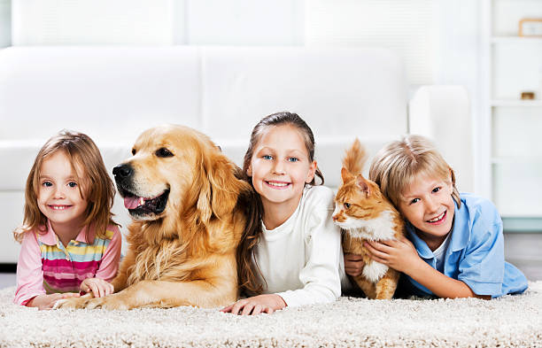 Children with animals lying down on the carpet picture id169950473?b=1&k=6&m=169950473&s=612x612&w=0&h=fcqlplha 4m 5ifmmbytvfmu2qrqsjpg6gzobl u 50=