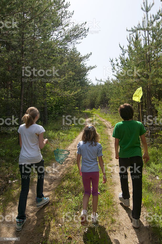 Children with butterfly nets . stock photo