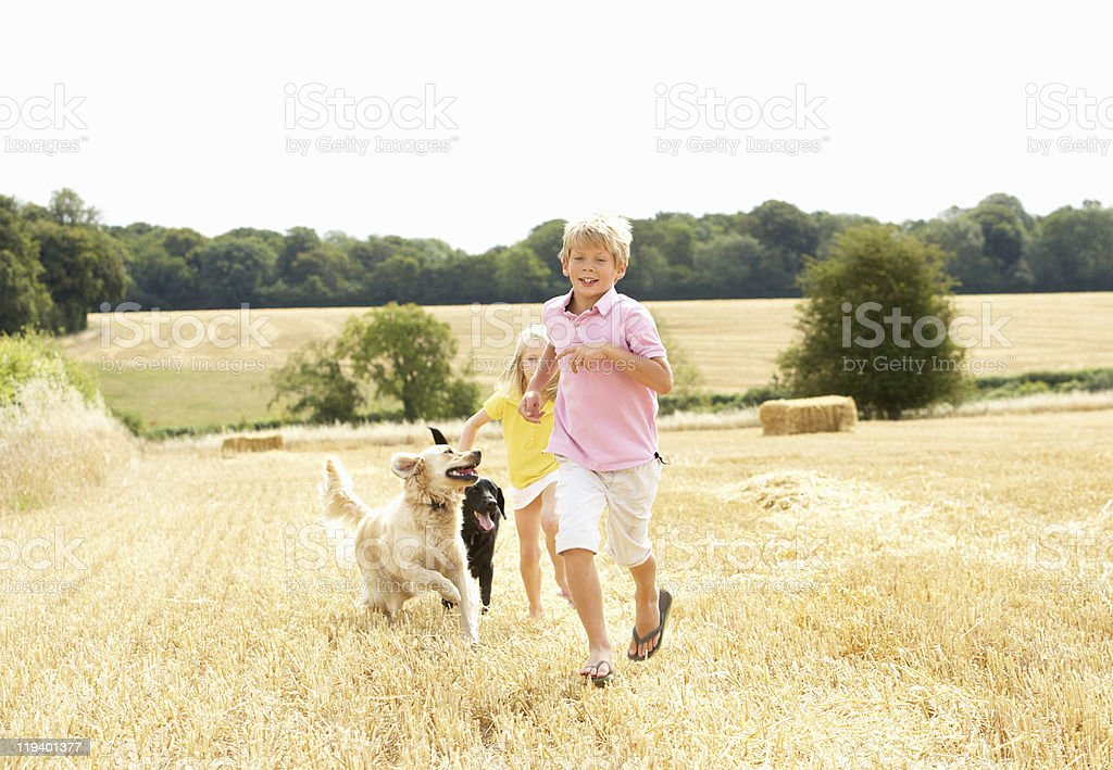 Children With Dogs Running Through Summer Field royalty-free stock photo