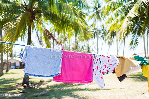 Children's clothes on washing line in the coconut plantation at seaside.