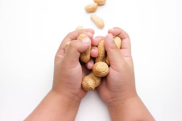 Children's Hand Holding Peanuts, isolated on a white background stock photo