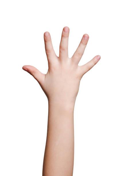 niños de la mano aislada sobre blanco - brazo fotografías e imágenes de stock