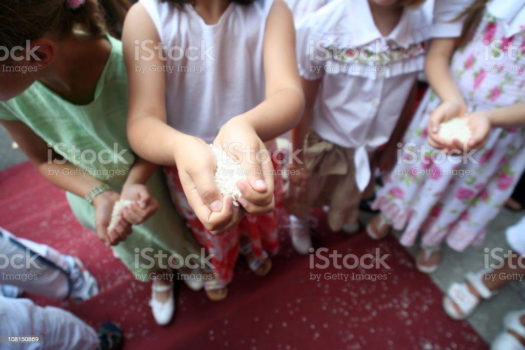 Children's Hands Holding Handfuls of Rice royalty-free stock photo