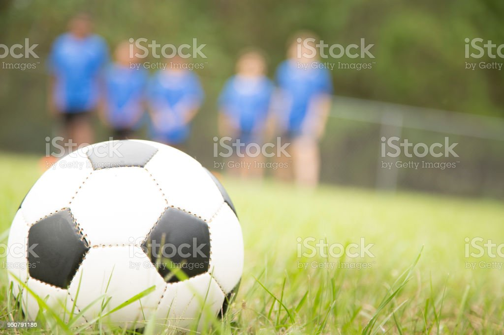 Multi-ethnic and mixed age group of children\'s soccer team players...