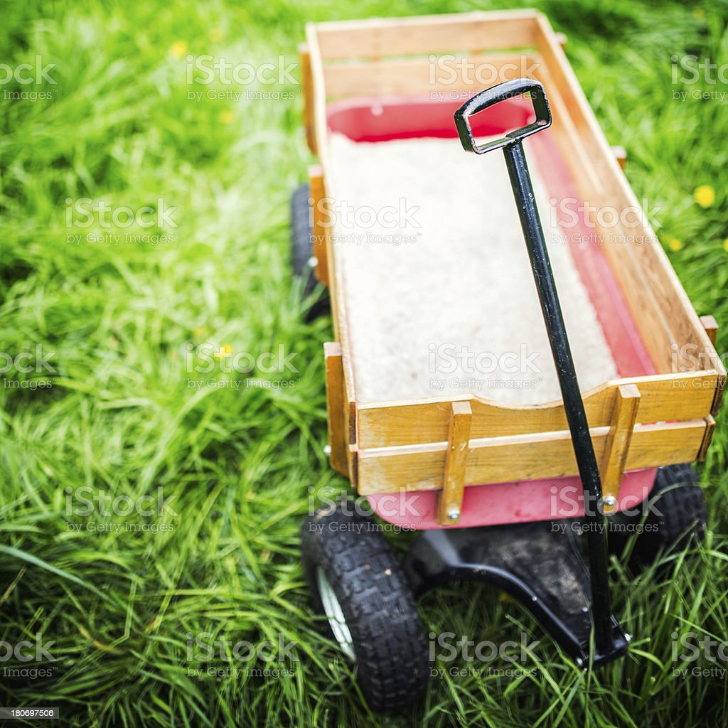 Childrens Wagon on Green Grass royalty-free stock photo