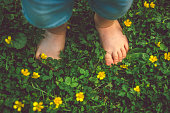 Feet of toddler among flowers