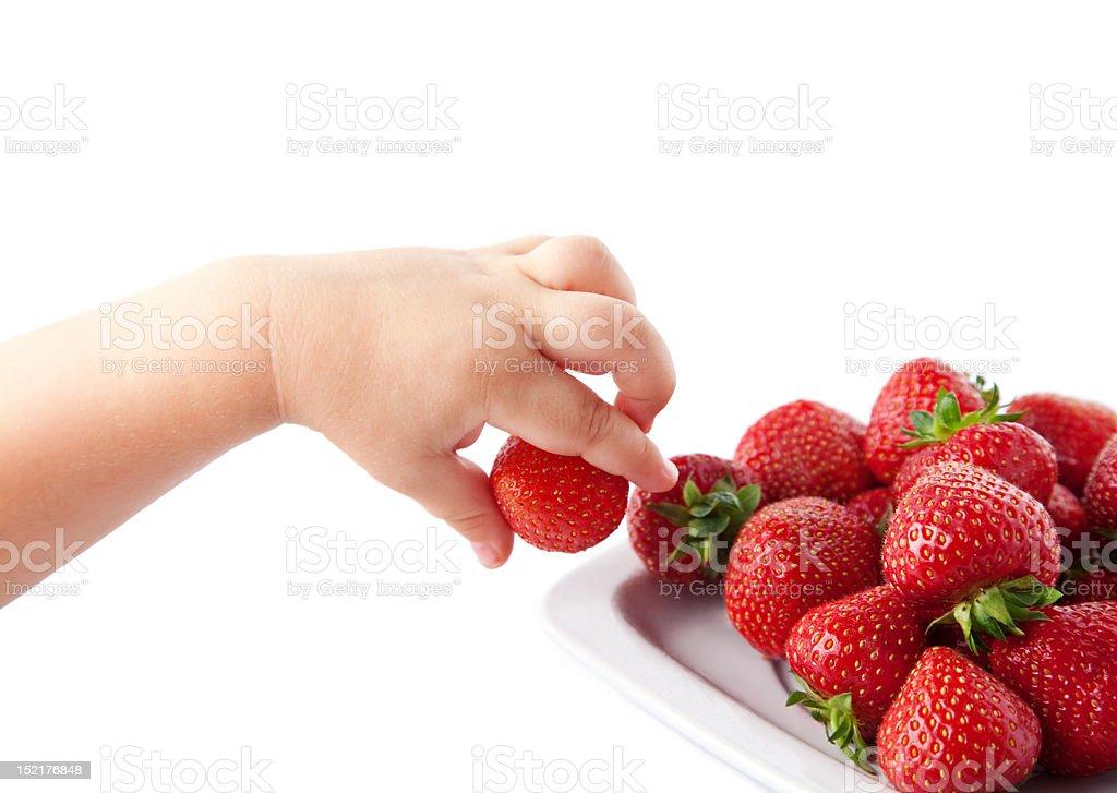 child's hand with strawberries. stock photo